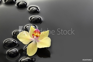 Picture of Black Zen stones and orchid on calm water background