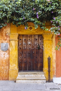 Picture of Antique wooden door entrance under trees