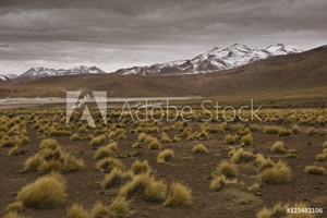 Picture of Mountain range, Chile, South America