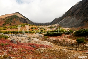 Picture of autumn landscape in Kamchatka
