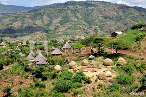 Picture of Country of tribe Derashe in Ethiopia
