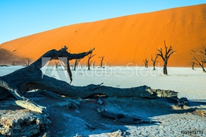 Picture of Ecotourism in Namib-Naukluft Park