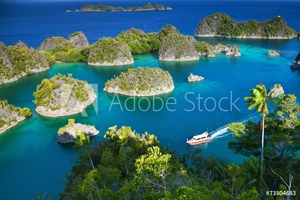 Picture of Fam islands Wayang Indonesia