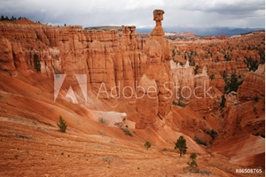 Picture of Bryce Canyon National Park, Utah, USA