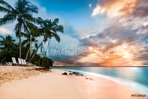 Picture of Exotic long exposure seascape with palm trees at sunset, on a public beach in Cayo Levantado, Dominican Republic
