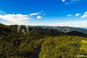 Picture of Aerial View of Mountains in Rainforest