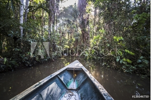 Picture of Canoe boat trip in Amazon Jungle of Peru, by Sandoval Lake in Tambopata National Reserve, Peru, South America