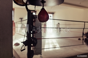 Picture of Empty boxing ring with speed bag in foreground