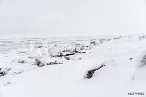 Picture of Ice at coastline of the Pacific ocean