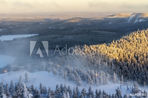 Picture of Beautiful winter view in the early morning. Finland, Ruka
