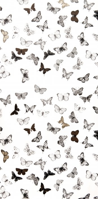 Picture of Butterfly White/Black - WP1094